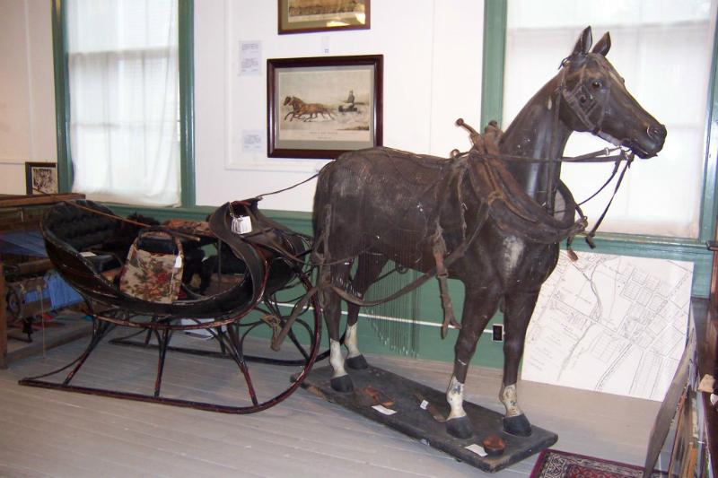Super Book Horse